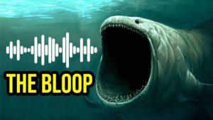 Audio: Kdo vydává záhadné zvuky z oceánu?