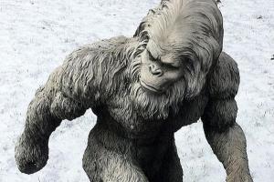 Má legendární Bigfoot zvláštní schopnosti?