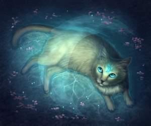 Kočka: Tajemný přítel na hranici světů: Díl 2.