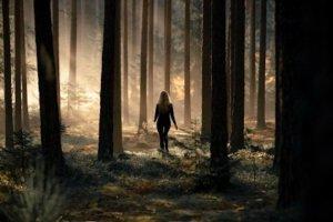 Příběh dívky, která se ztratila, objevila, a poté zmizela beze stopy