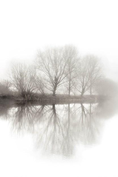 fogg1 (1 of 1)-2