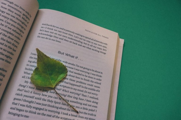 cara membuat footnote dari buku