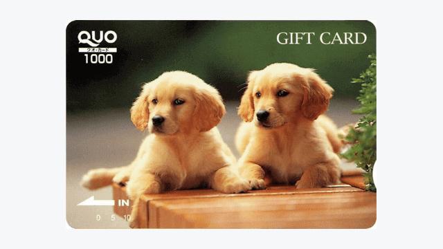 エコートレーディングの株主優待「QUOカード」