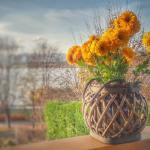 Wonen | Een klein balkon inrichten | Lionshome