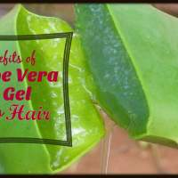 Natural Hair:: Benefits of Aloe Vera Gel