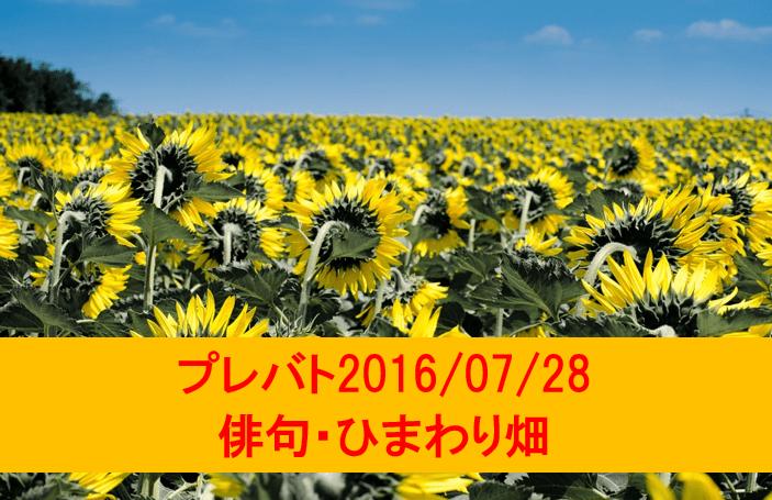 プレバト・俳句・ひまわり畑・2016年7月28日放送・東国原英夫の句に注目