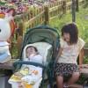 遊園地「ぐりんぱ」は誕生月割引で超お得に遊ぼう!