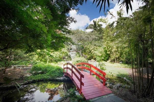 miami-beach-botanical-garden-4