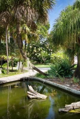 miami-beach-botanical-garden-8