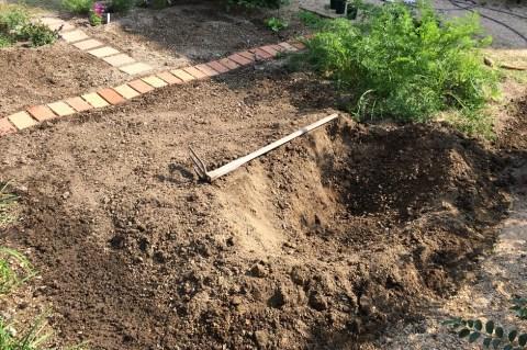 畑の一部に植付け・穴掘り