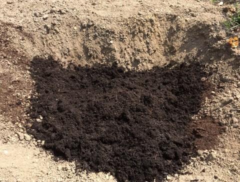 大量に牛ふん堆肥投入
