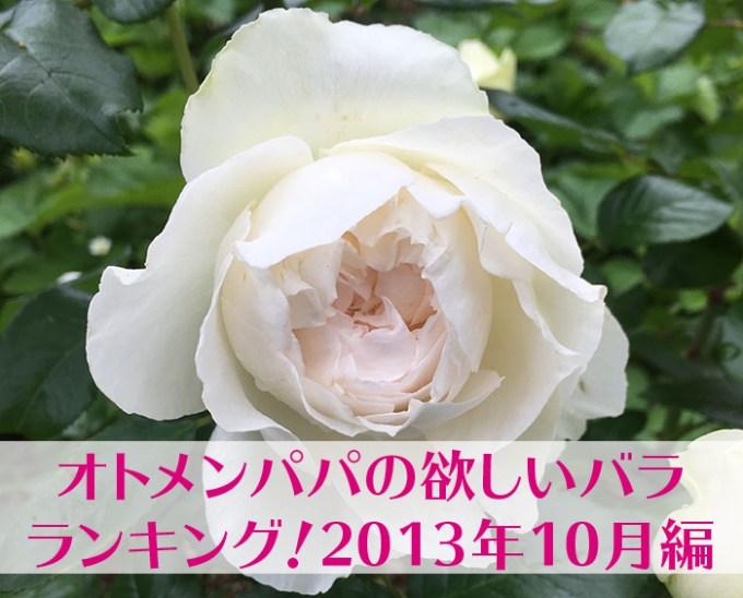 欲しいバラランキング201310