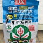 オルトランDX粒剤