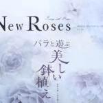 NewRoses2014vol.14は鉢バラ特集でした!