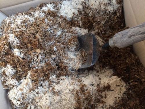 馬ふん堆肥と米ぬかを良く混ぜる
