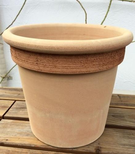 テラコッタの10号鉢