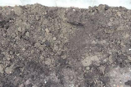 数か月後土が柔らかくなった