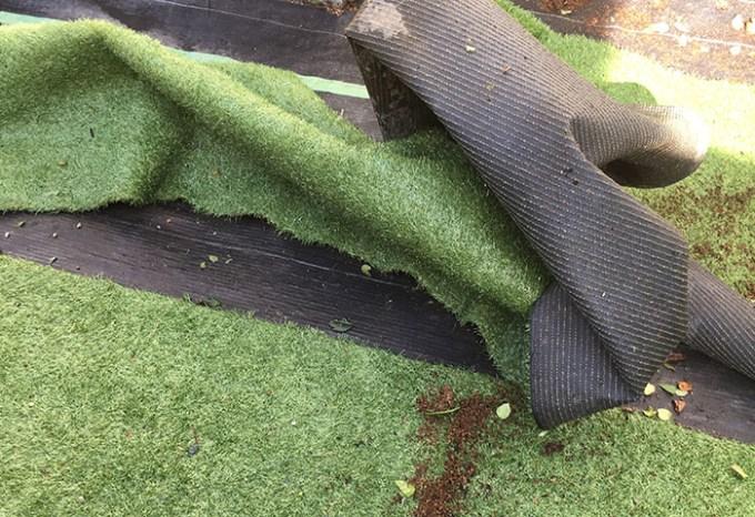 台風でめくれた人工芝2