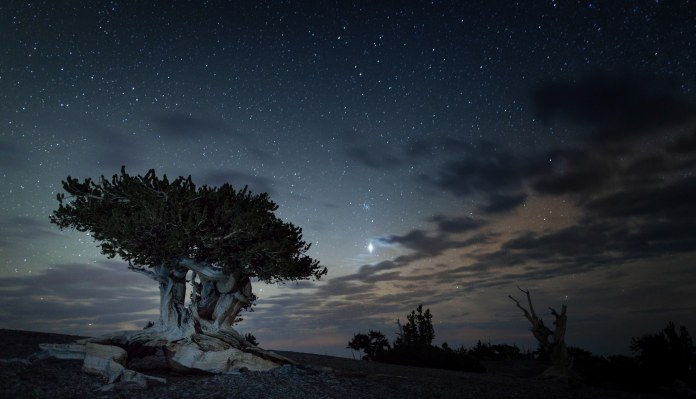 Night Sky Mount Washington