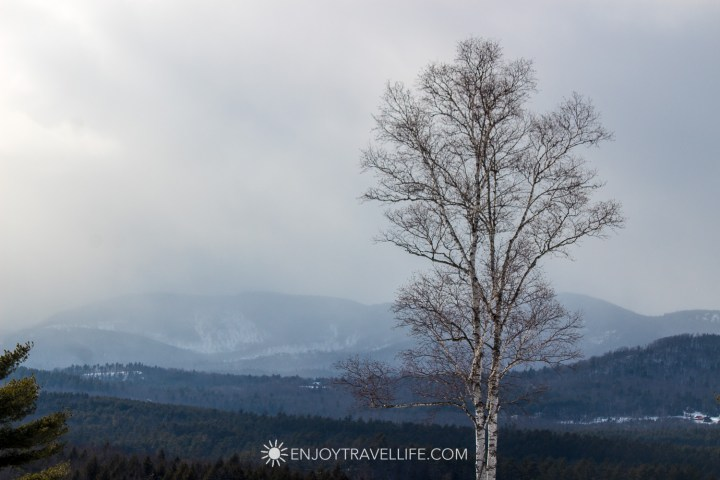 Winter in Bethel Maine | Birch Tree | Mountaintop