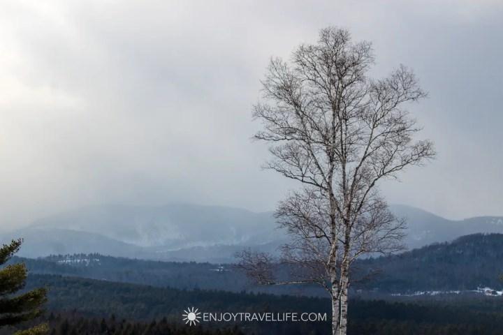 Winter in Bethel Maine | Birch Tree | Mountaintop