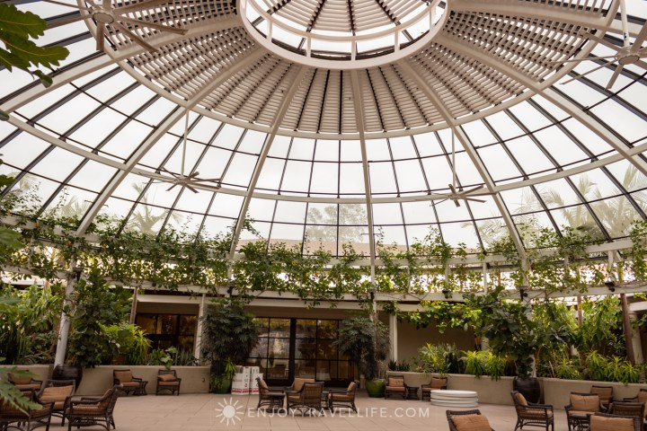 The Conservatory at The Huntington Library, Art Collection, and Botanical Gardens