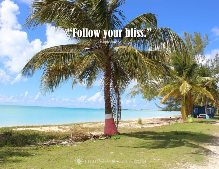 "Caribbean scene with palm tree, inspirational quote reading ""Follow your bliss."""