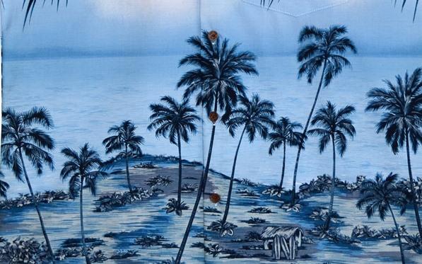 Hawaiiskjorten