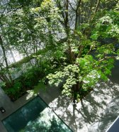 dezeen_Optical-Glass-House-by-Hiroshi-Nakamura_11