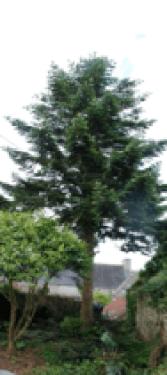 Capture d'écran 2013-07-21 à 21.01.41