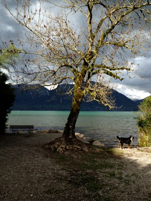 Lac d'Annecy, le Piron - mardi 8 avril 2014, vers 17 h 30 - IMG_2468