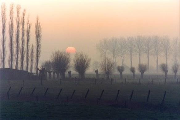 Flandres-wintersunset