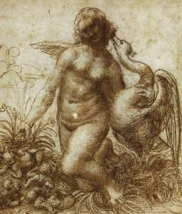 Léonard de Vinci - étude pour Léda agenouillée et le cygne