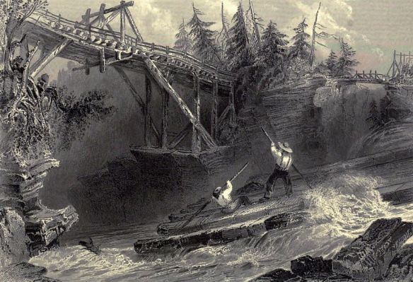 w-h-bartlett-timber-slide-and-bridge-on-the-ottawa-river-5canadian-scenery
