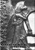 Pilot Abgal in eagle helmet