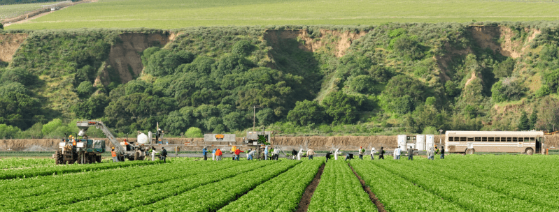 Guidelines for farmworkers