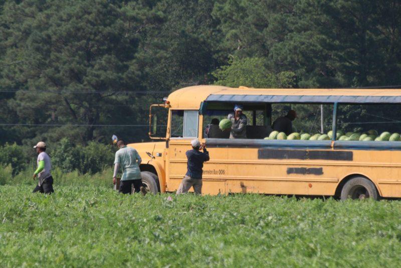 trabajadores esenciales de Carolina del Norte