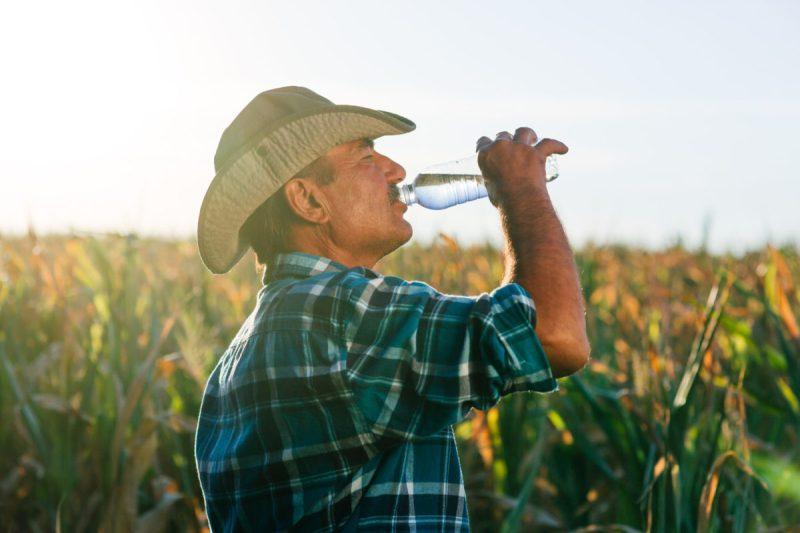 Golpe de calor en trabajadores agrícolas