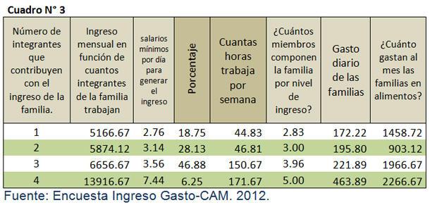 encuesta ingreso gasto del CAM