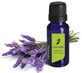 Homemade Remedies For Pets Using Essential Oils_2.jpg