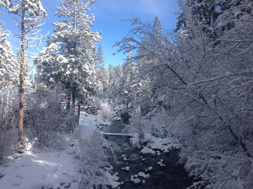 parks-creek-in-winter