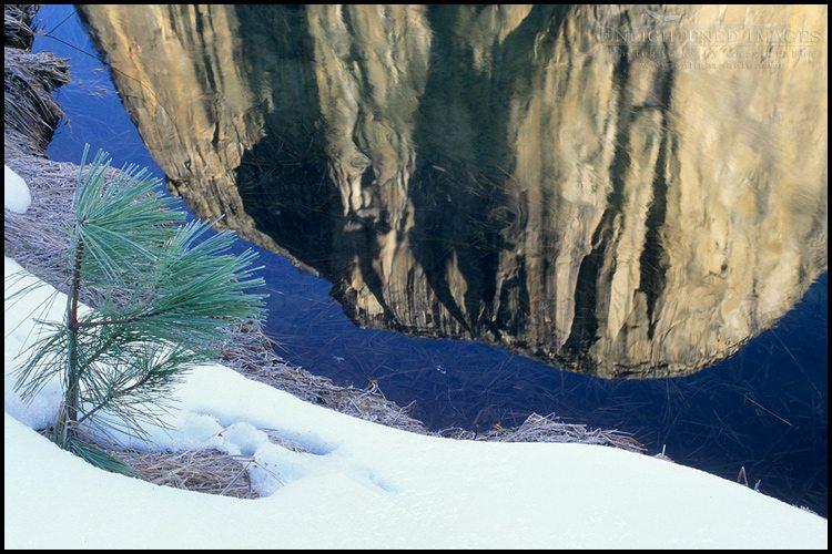 http://enlightphoto.com/photo-info/yes20025-el-capitan-winter-reflection-photo.html