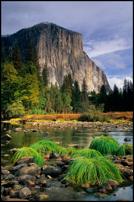 Photo: El Capitan over the Merced River, Gates of the Valley, Yosemite Valley Yosemite National Park, California - ID# vly3-1116