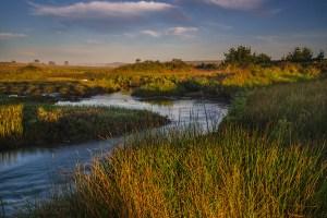 Photo: Stream flowing through coastal marsh wetlands at Limantour Beach, Point Reyes National Seashore, Marin County, California