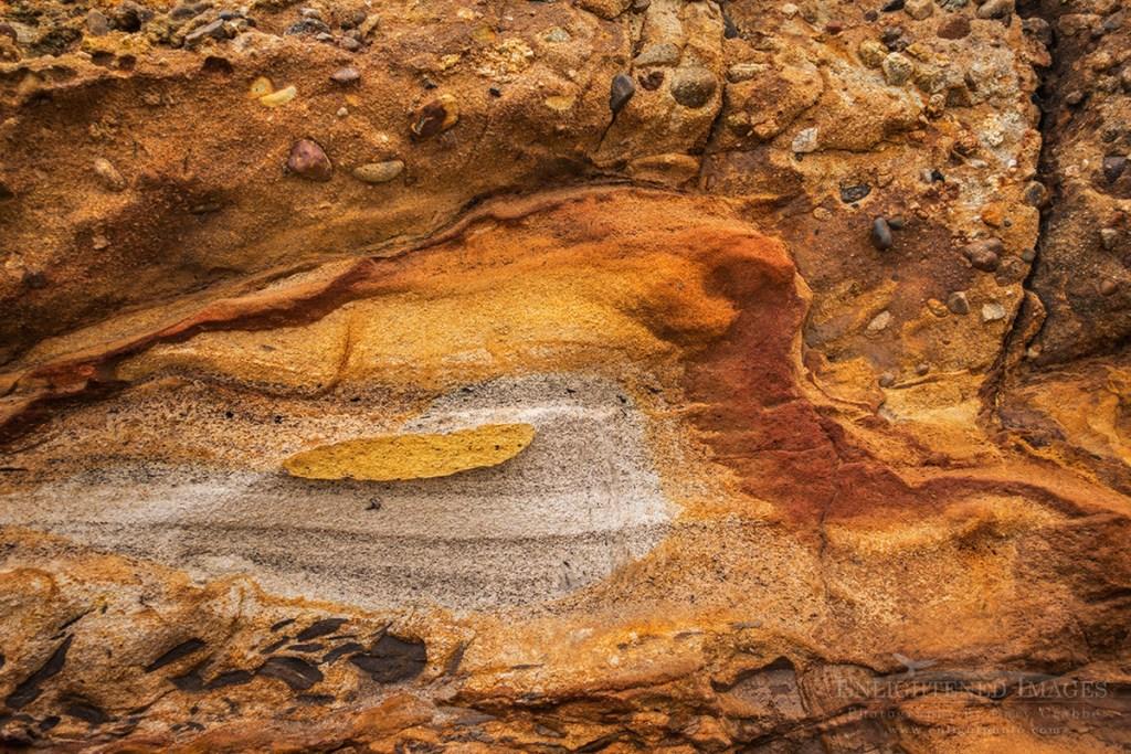 Photo: Rock Detail, Point Reyes National Seashore, Marin County, California