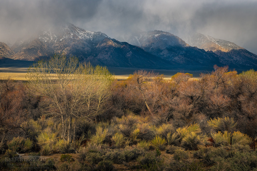 Photo: Storm clouds and sunlight drifting over the mountains of the Eastern Sierra, near Lone Pine, Inyo County, California