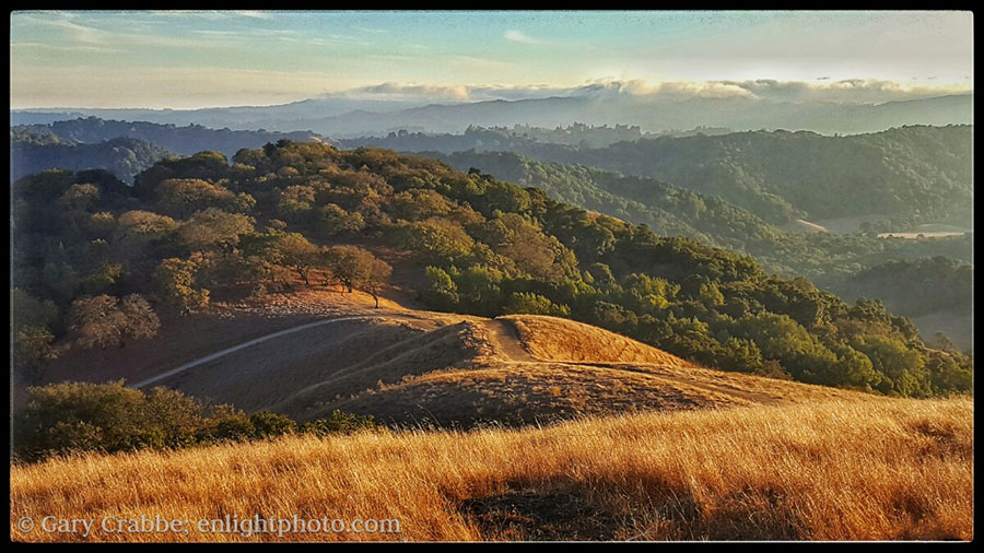 Photo: Overlooking the hills of Briones Regional Park, Contra Costa County, California