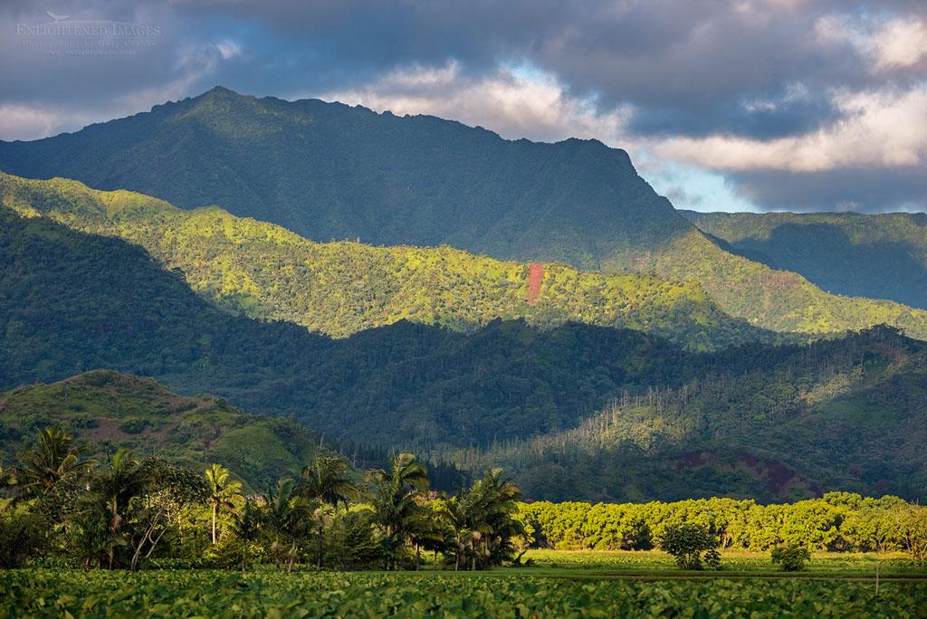 Photo: Sunlight on the Hanalei Valley, Kauai, Hawaii
