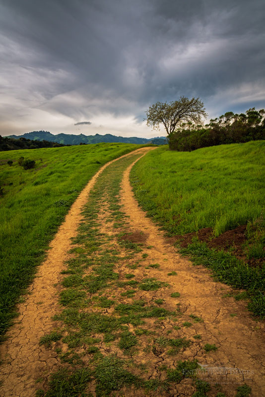 Photo: Storm clouds over the Lafayette Resevoir Rim Trail, Lafayette, Contra Costa County, California