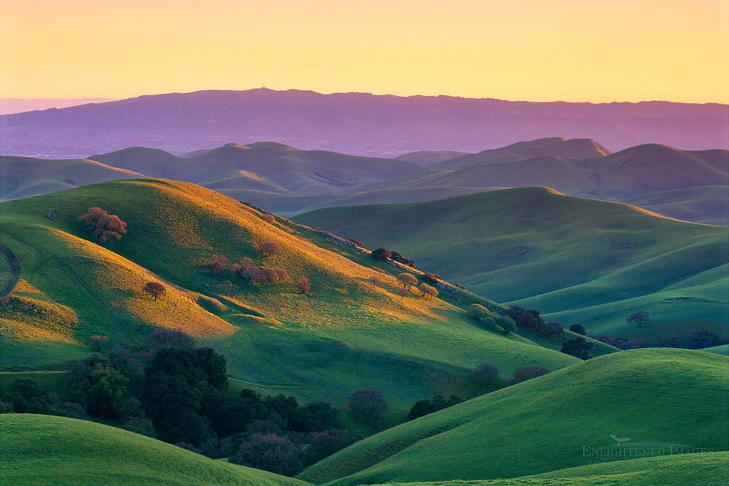 Photo: Sunset light on green hills in spring, Tassajara Region, near Livermore Contra Costa County, California